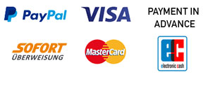 Visa / Mastercard, PayPal, SOFORT Überweisung, Debit, Payment in advance